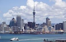 Wyjazdy językowe do Nowej Zelandii